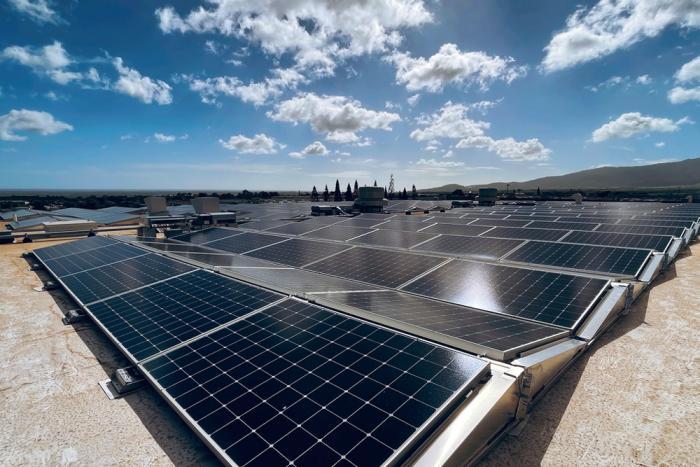 Come funziona il processo che rende la tua azienda energicamente autosufficiente grazie al solare